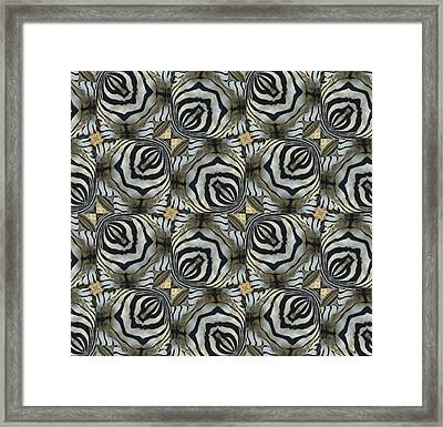 The Owl And The Zebra Framed Print by Maria Watt