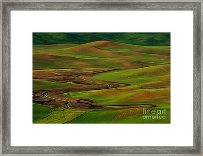 The Palouse Framed Print by Beve Brown-Clark Photography