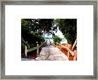 The Path Framed Print by Brenda Leedy