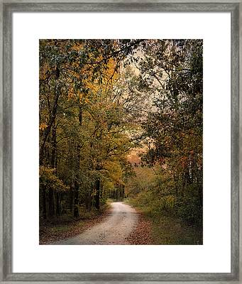 The Path Less Traveled 2 Framed Print by Jai Johnson