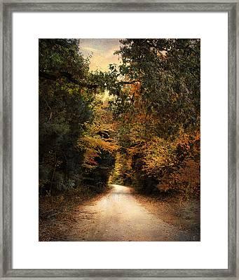 The Path Less Traveled Framed Print by Jai Johnson