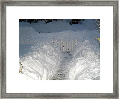 Framed Print featuring the photograph The Path To Freedom by Beth Saffer