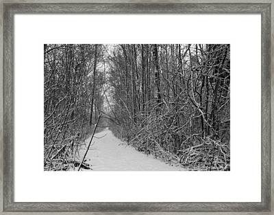 Framed Print featuring the photograph The Path To North Pole by Nick Mares