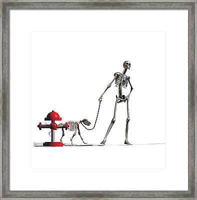 The Paws That Refreshes Framed Print