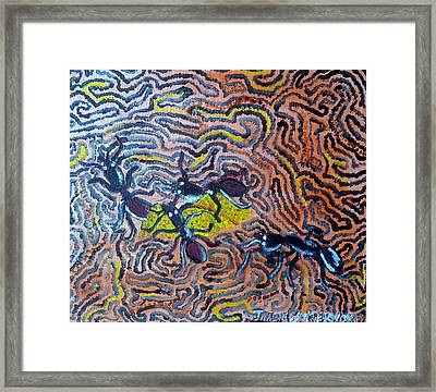 The Pilgramage Of Ants Framed Print by Julie Butterworth