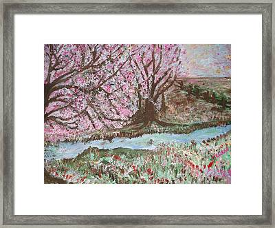 The Pink Tree Framed Print