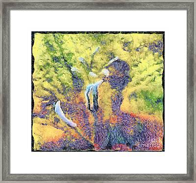 The Pistils Framed Print