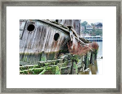 The Planter Framed Print by JC Findley