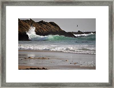 Framed Print featuring the photograph The Point by Johanne Peale