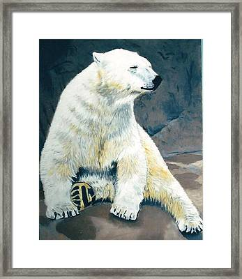 The Polar Bear Framed Print by Terry Forrest