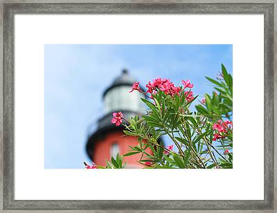 The Ponce Framed Print