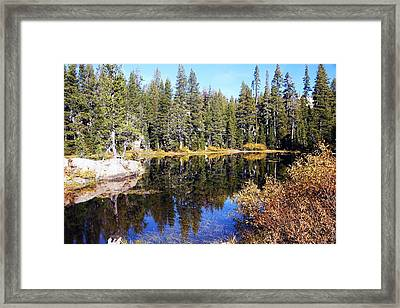 The Pond Framed Print by Michael Courtney