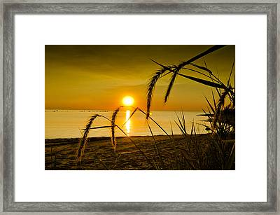 Framed Print featuring the photograph The Port by Jason Naudi Photography