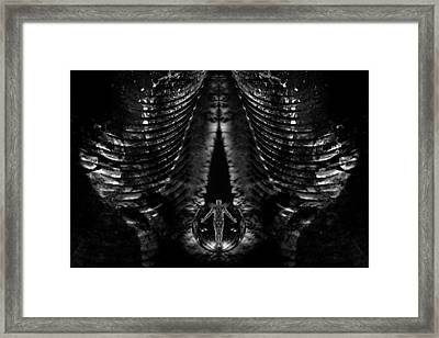 The Portal Between Framed Print by David Kleinsasser
