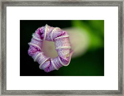 The Possibility Framed Print by Melanie Moraga