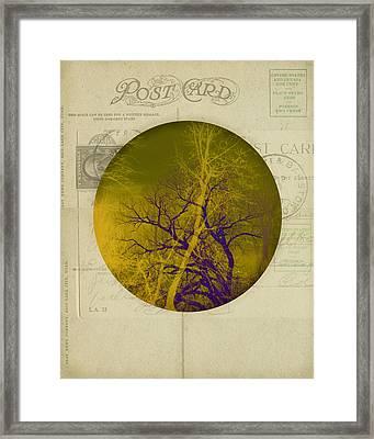 The Postcard Framed Print by Ann Powell