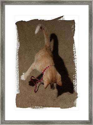 The Pounce Framed Print