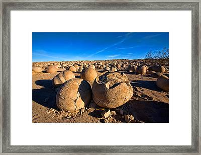 The Pumpkin Patch Framed Print by Peter Tellone