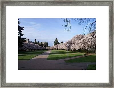 Framed Print featuring the photograph The Quad by Jerry Cahill