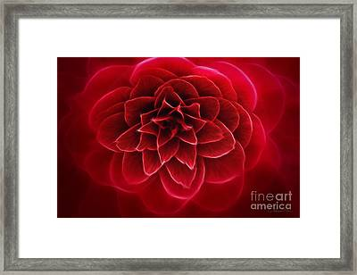 The Queen Of Seduction Framed Print