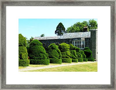 The Queens Beasts Framed Print by Steve Taylor
