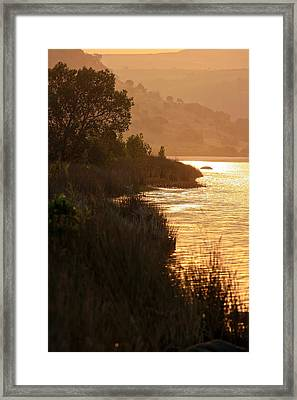 The Quiet Life Framed Print by Miguel Capelo