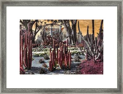 The Real World Framed Print