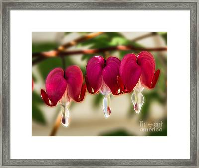 The Red Heart Framed Print by Robert Bales
