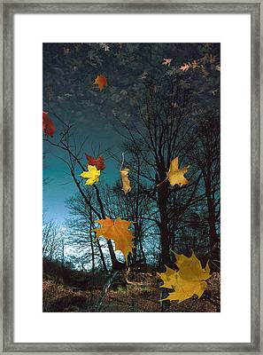 The Reflected Mind Framed Print