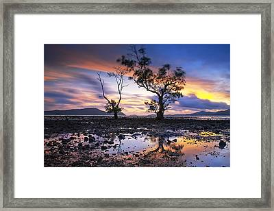 The Reflex Of Tree In Sunset Framed Print by Arthit Somsakul