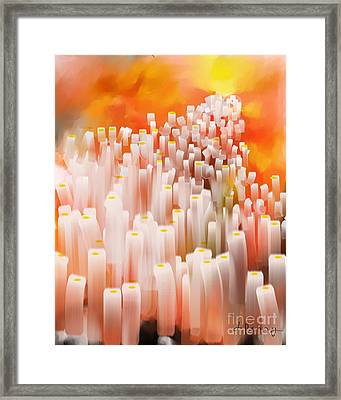 The Right Path Framed Print