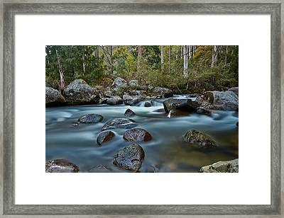 The River Wild Framed Print by Mark Lucey