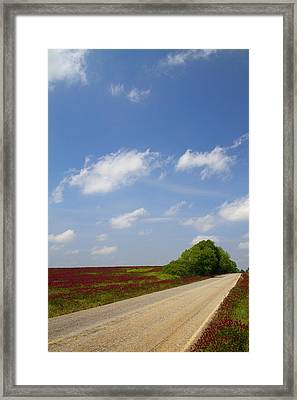 The Road Ahead Is Lined In Red Framed Print by Kathy Clark