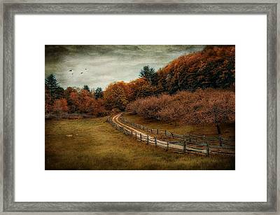 The Road Less Traveled Framed Print by Robin-Lee Vieira