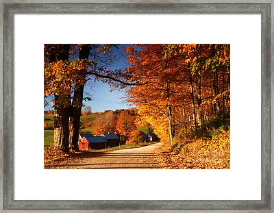 The Road To The Jenne Farm Framed Print by Butch Lombardi