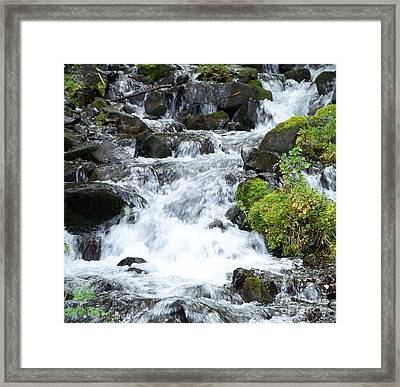 Framed Print featuring the photograph The Roadside Stream by Chalet Roome-Rigdon
