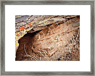 The Rock Facing Framed Print