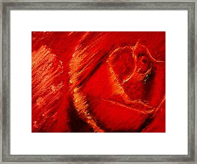 The Rose II Framed Print by David Patterson