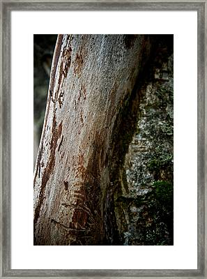 The Rough And The Smooth Framed Print by Odd Jeppesen