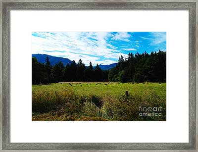The Second Harvest  Framed Print by Jeff Swan