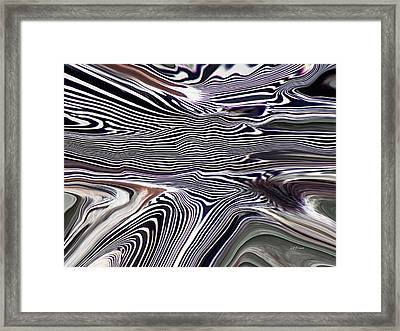 The Secret Life Of Zebras Framed Print