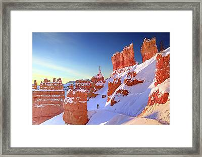 The Sentinal Bryce Canyon Framed Print by (C) Rob Little