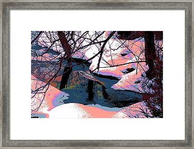 The Shades Of Winter Framed Print by Shirley Mailloux