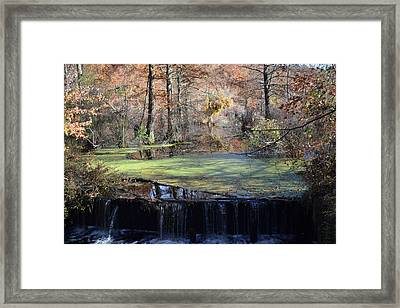 Framed Print featuring the photograph The Side Of The Road by Kelly Reber