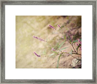 The Simple Things Framed Print by Jai Johnson