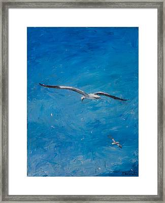 the Sky's the Limit Framed Print by Sophie Brunet