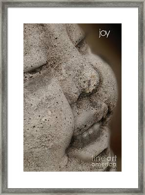 Framed Print featuring the photograph The Smile by Vicki Ferrari