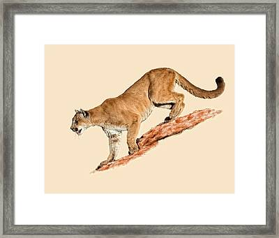 The Sneaky Approach Framed Print by Dewain Maney