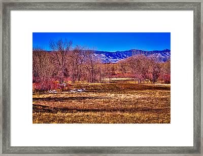 The South Platte Park Landscape Framed Print by David Patterson
