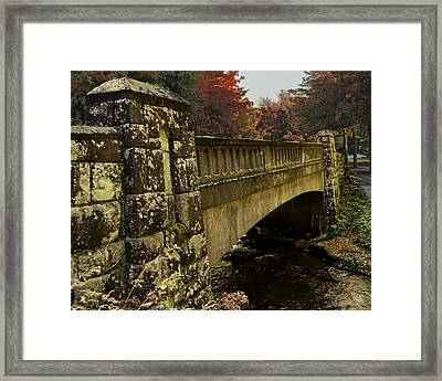 The Span Framed Print by Larry Bishop
